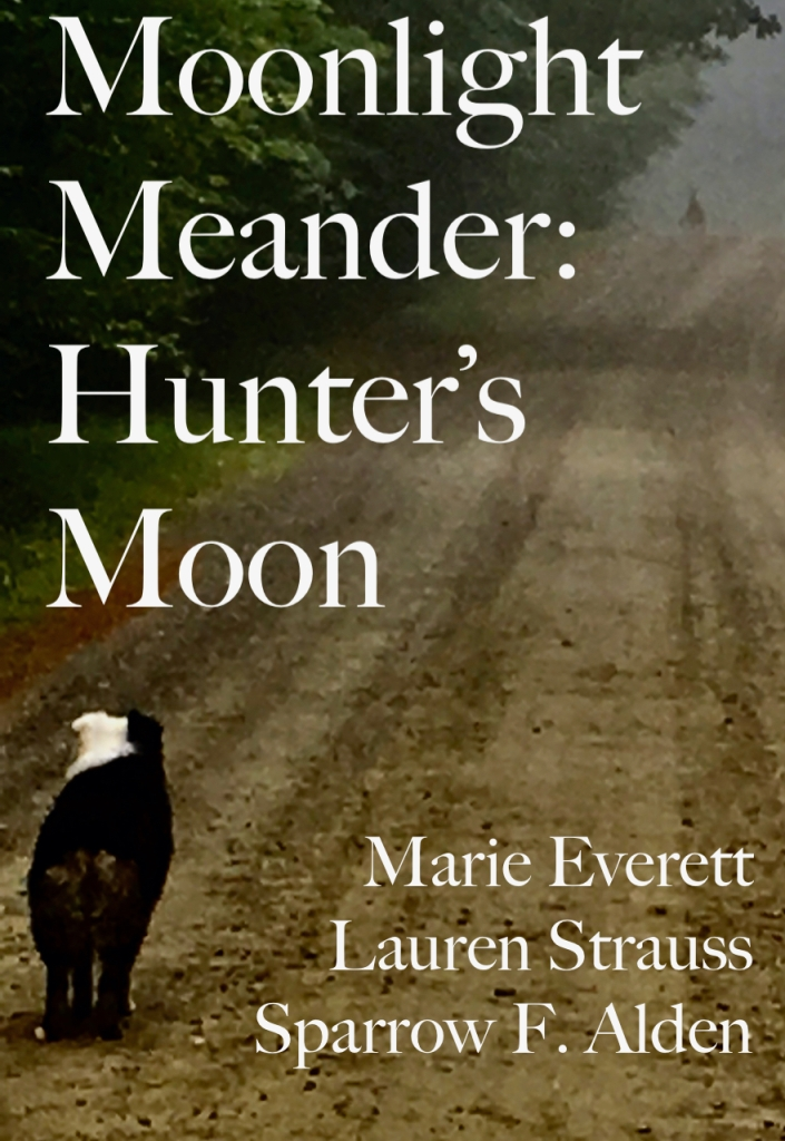 The book cover shows a Very Good Dog staring down the tree-lined dirt road at a whitetail buck in the mist.  they stared at one another for quite a while before he bounded away.  there are authors' names and the book title, but they are not as important as the Very Good Dog who ran to tell her Mommy how beautiful and wonderful the Big Animal had been.  I swear she was doing the dog-equivalent of weeping with the beauty of it.